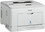 Epson WorkForce AL-M300D Printer